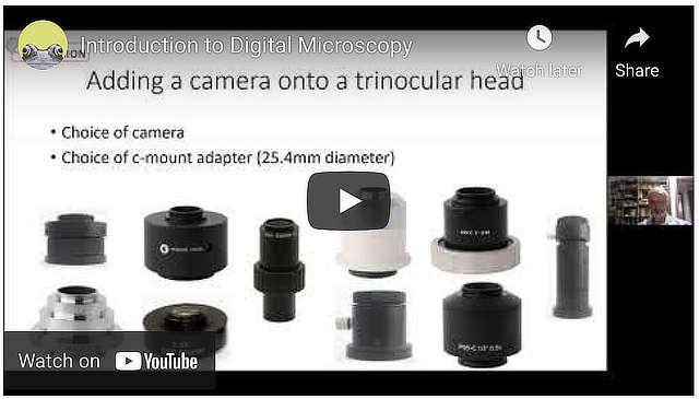 Introduction to Digital Microscopy